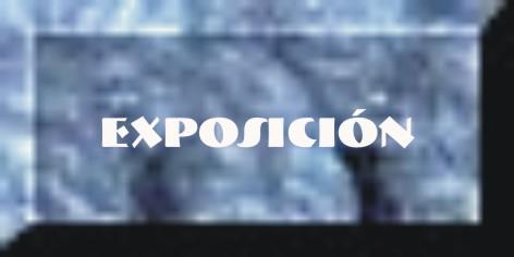 Botón exposición